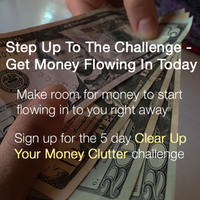 Money challenge opt in.psd