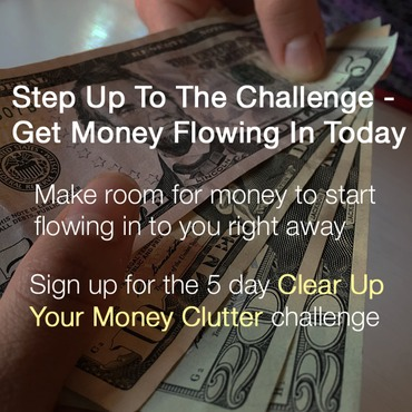 Money challenge opt in.jpg